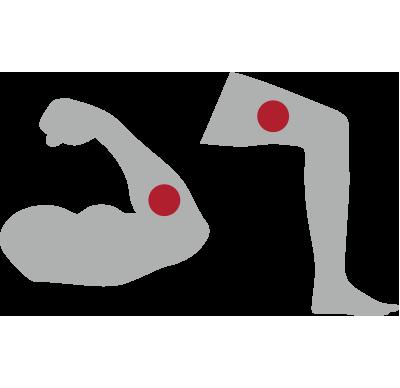 Human arm and human leg