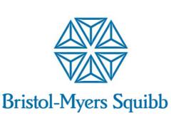 bristol_sponsor