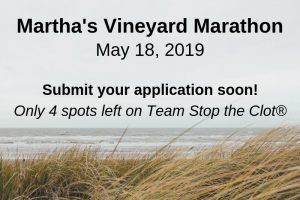 2019 Martha's Vineyard Marathon